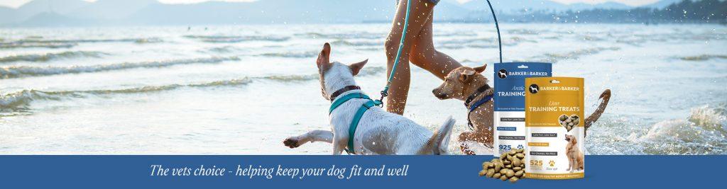 healthy and natural dog treats