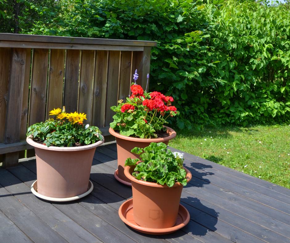 decorative indoor flower pots